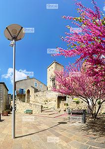 Europe, France, RŽgion Occitanie, 11 - Aude, Duilhac sous Peyrepertuse, le centre mŽdiŽval appelŽ le Fort et lÕŽglise romane Saint-Michel